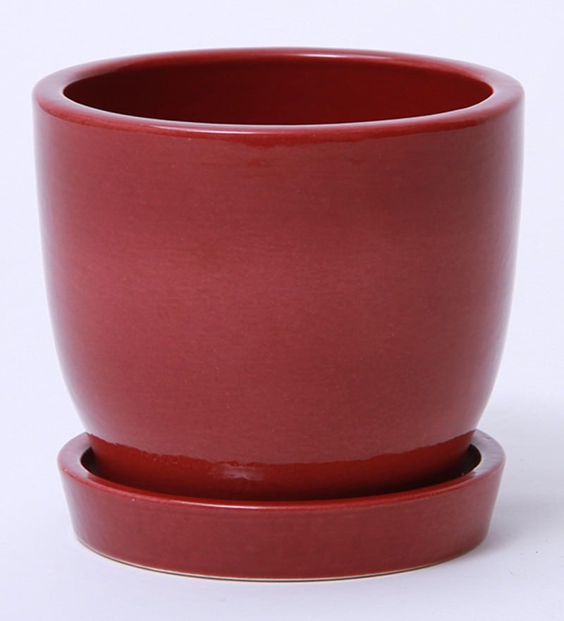 Maroon Ceramic Glazed Table Top Pot with Saucer By Decardo
