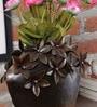 Brown Metal Flower Medium Pot by Malik Design