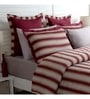 Red 100% Cotton Single Size Duvet Cover - Set of 2 by Maspar