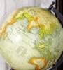NB Home Interior Industry Multicolour MDF Globe