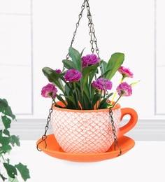 Orange  And White Terracotta Cup Saucer Hanging Planter