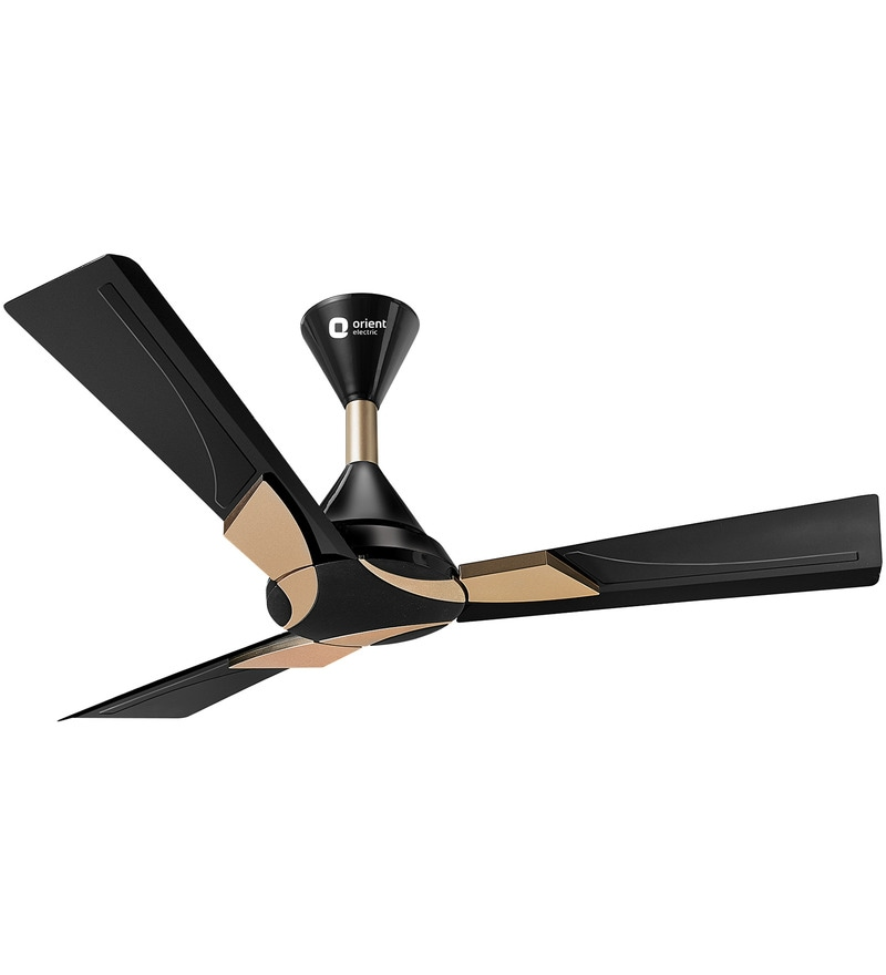 Orient Wendy Metallic Black & Gold 1200mm Designer Ceiling Fan