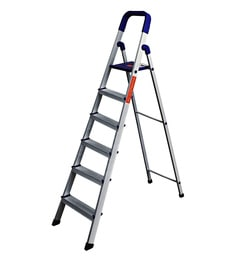 Paffy Home Pro PPCP & Aluminium 6 Steps 4.6 FT Folding Ladder