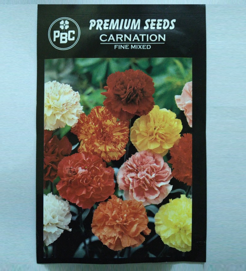 Carnation Fine Mixed Premium Seeds - Pack of 2 (200 Seeds) by PBC