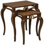 Piaget Nesting Tables (Set of 2) in Dark Brown Colour by INDOORS