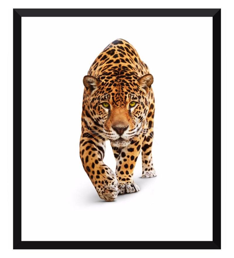 Poster Paper 12 x 14 Inch Stalking Leopard Framed Poster by Tallenge
