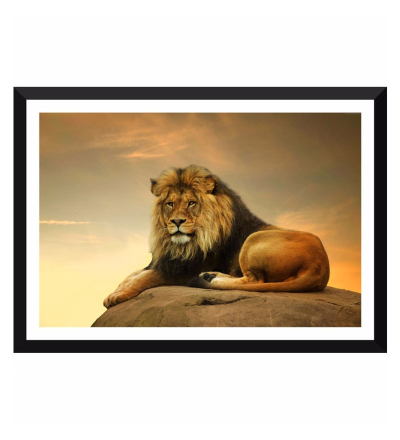 Poster Paper 17 x 11 Inch Majestic Lion Framed Poster by Tallenge