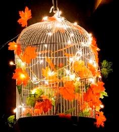Untold Homes Bird Cage Metal Chandelier