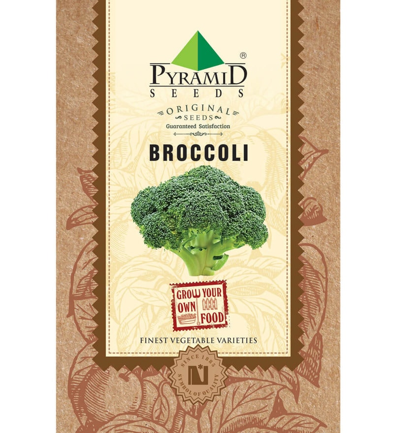Pyramid Broccoli Seeds