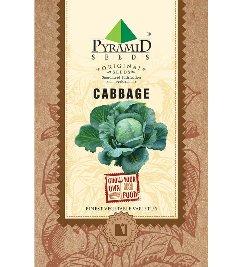 Cabbage Seeds by Pyramid Seeds