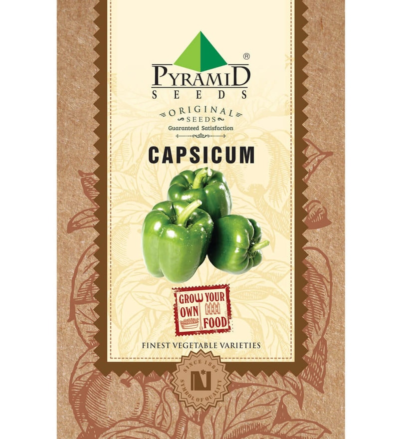 Pyramid Capsicum Seeds