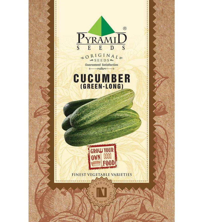 Green Cucumber (Long) Seeds by Pyramid Seeds