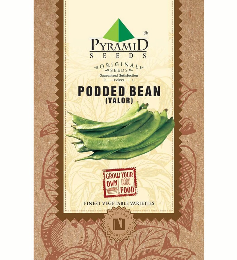 Green Podded Beans (Valor) Seeds by Pyramid Seeds