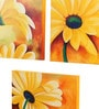 Canvas 16 x 2 x 16 Inch Floral Musing Yellow Framed Art Panels - Set of 3 by Rang Rage