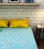 Raymond Home Green Cotton Queen Size Bedsheet - Set of 3