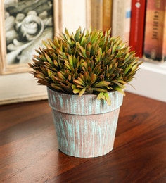 Artificial Plants: Buy Artificial Plants/Trees Online at