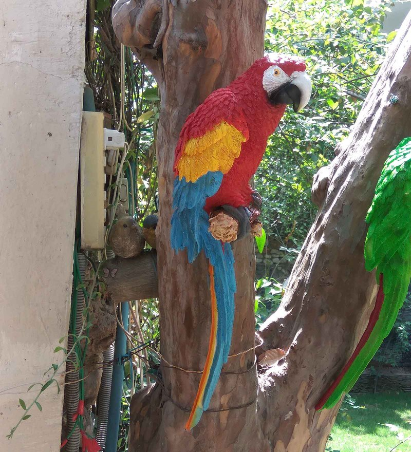 Red Resin 18.5 Inches Height Large Wall Parrot Garden Decor by Wonderland