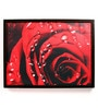 Wooden 18 x 1 x 24 Inch Red Rose with Water Droplets Romantic Framed Canvas Painting by Retcomm Art