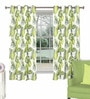 Skipper Green Viscose & Polyester Nature & Floral Window Curtain - Set of 2