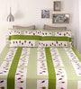 Green Cotton Queen Size Bed Sheet - Set of 3 by Snuggles