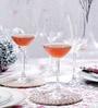 Spiegelau Cremona White Wine Crystal 270 ML Wine Glass - Set of 4