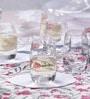 Spiegelau Vino Grande Crystal Glass 60 ML Shot Glass  Set of 6
