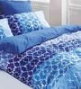 True Multicolour 100% Cotton Abstract Bed Sheet by Esprit Home