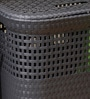 Spread Plastic 60 L Black Laundry Basket