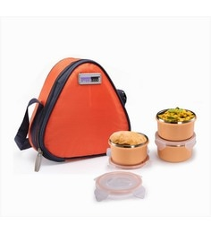 Steel Lock Dual 2203 Airtight Orange Plastic & Stainless Steel Lunch  Box - Set Of 3