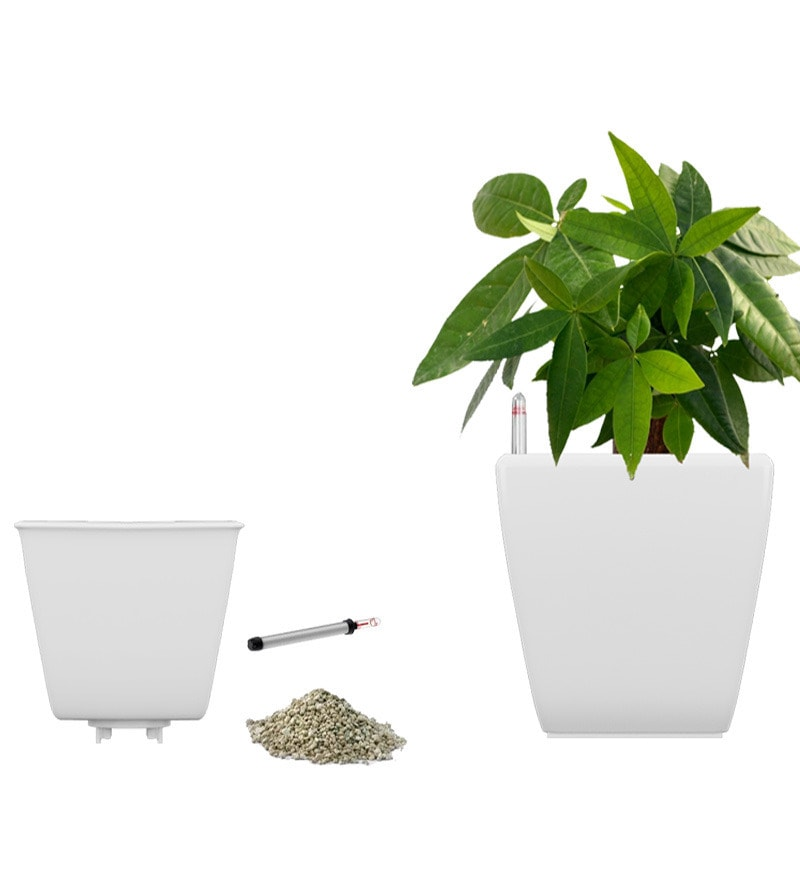 Stella White Self Watering planter by Yuccabe Italia