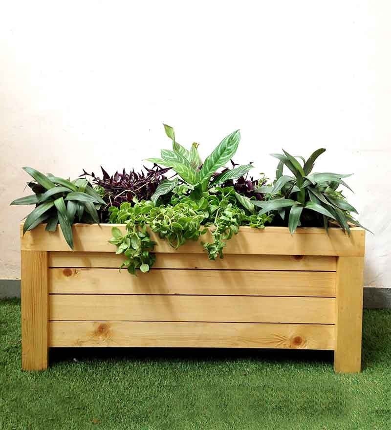 European Box Planter by Studio Earthbox