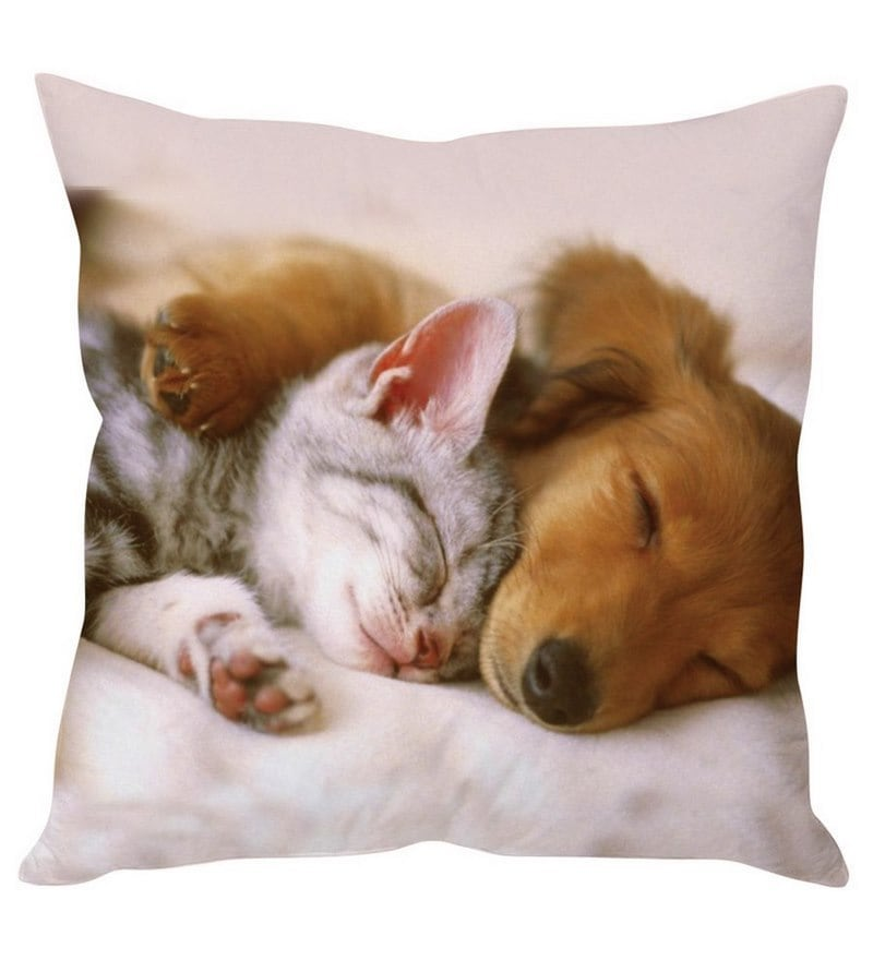 Cat & Dog White Silk Cushion Cover by Stybuzz