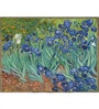 Tallenge Photographic Paper 18 x 24 Inch Old Masters Collection Irises by Vincent Van Gogh Framed Digital Art Prints