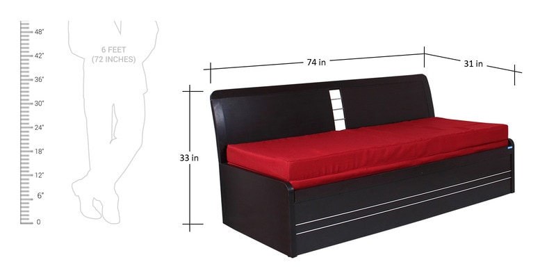 Buy Urbano Slider Storage Sofa Cum Bed By Spacewood Online