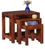 Toledo Set of Tables in Honey Oak Finish by Woodsworth