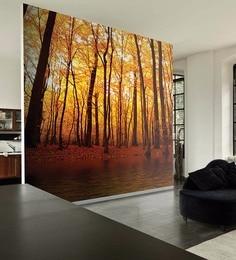 Orange Non Woven Paper Yellow Forest Wallpaper