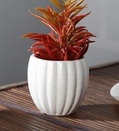 9639023fd8 Flower Pots/Planters Online: Buy Garden Pots for Plants in India ...