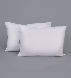 White Polyester 14 X 20 Inch Non Woven Cushion Filler - Set Of 2