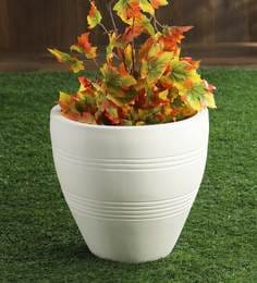 Pepperfry & Flower Pots/Planters Online: Buy Garden Pots for Plants in ...