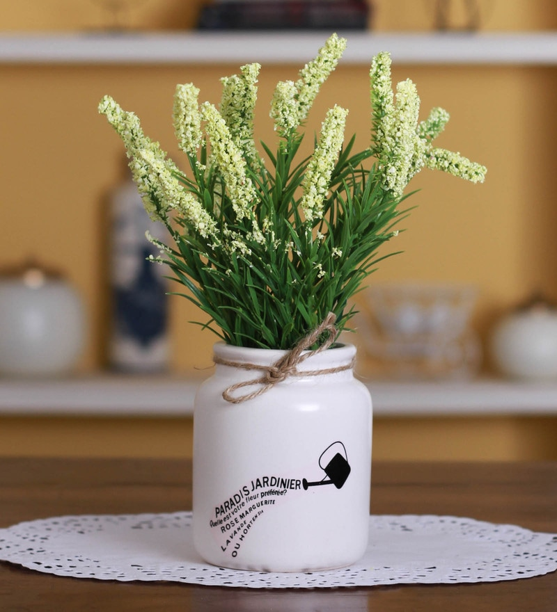 White Fabric & Ceramic Artificial Hogla Bonsai Tree in a Pot by Fourwalls