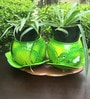 Wonderland Cabbage Shape Planter with 2 Pots