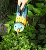 Wonderland Colorful Bird Water Can