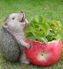 Wonderland Fat Hedgehog Flower Pot Planter