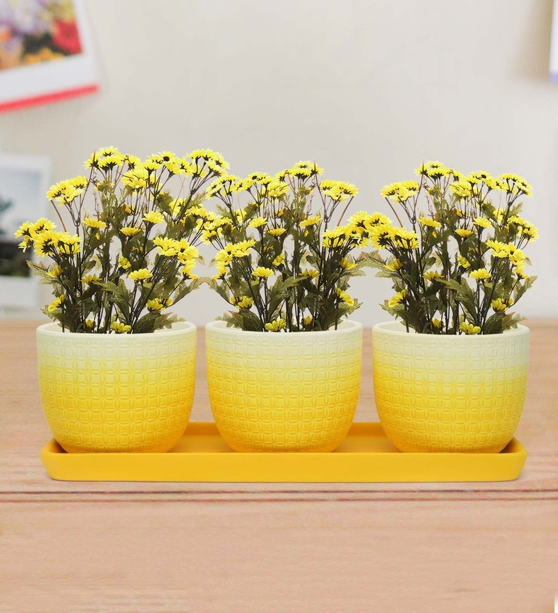 Yellow  and White Terracotta 3 Pieces Mini Garden Planter  and Tray by @Home Set Of 3