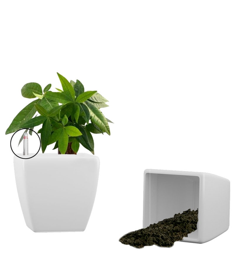 Combo for 2 Stella (White Self Watering Planter) by Yuccabe Italia