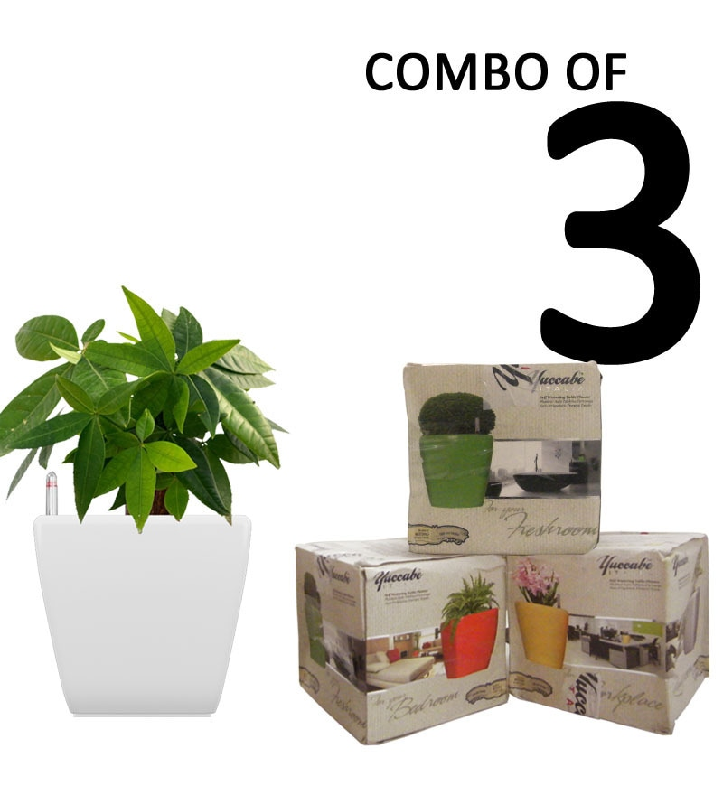 Combo for 3 Stella (White Self Watering Planter) by Yuccabe Italia