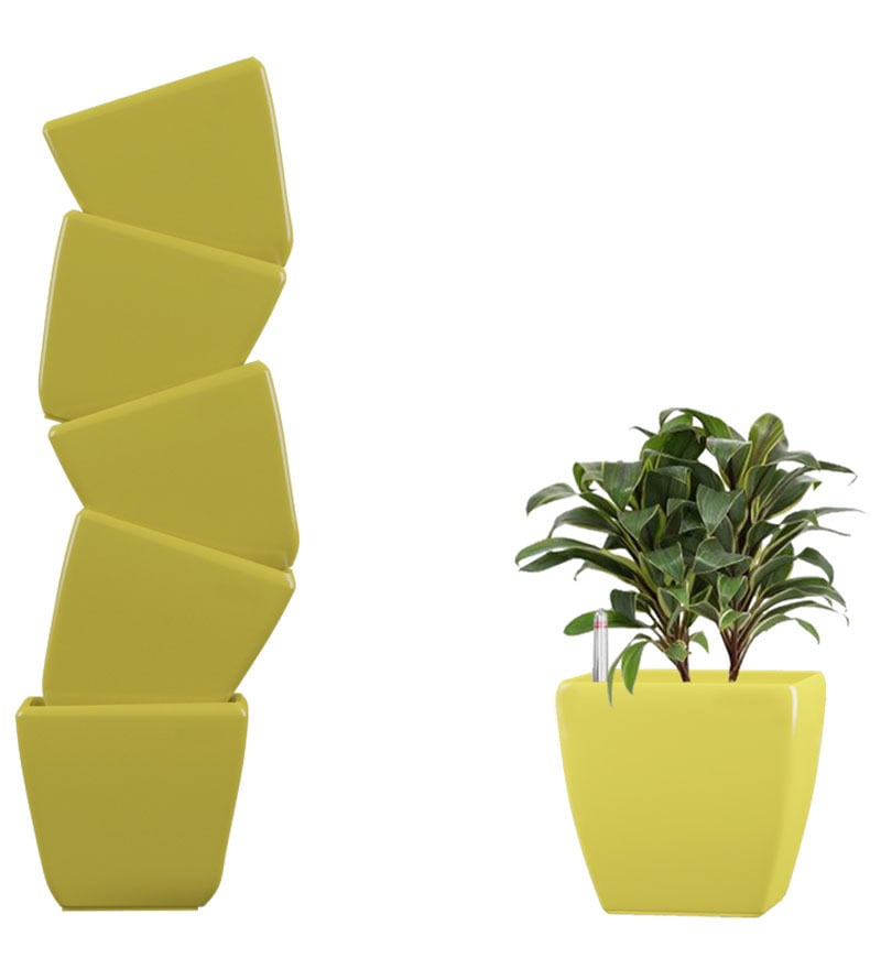 Combo for 6 Stella (Yellow Self Watering planter) by Yuccabe Italia