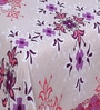 Purple Cotton 90 x 90 Inch Double Bed Sheet (with Pillow Covers) by Zesture Bring Home